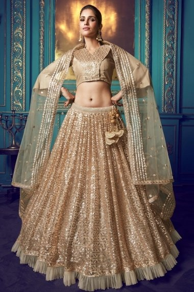 Beige Net Sequins Worked Lehenga with Frill Border and Bell Sleeves Blouse