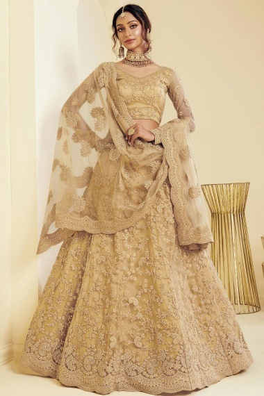 Beige Net Designer All Over Embroidered Lehenga Choli with Paisley Motifs