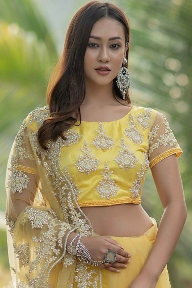 Pale Yellow Net Saree with Pearls Work