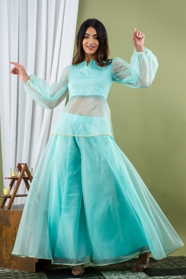 Light Blue Organza Crop Top with Palazzo